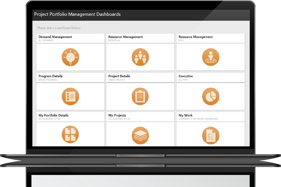 , Project and Portfolio Management, Adaptive Dynamics, Adaptive Dynamics
